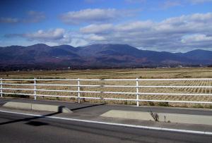 国仲平野から金北山