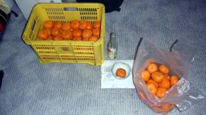 柿の渋抜き2011